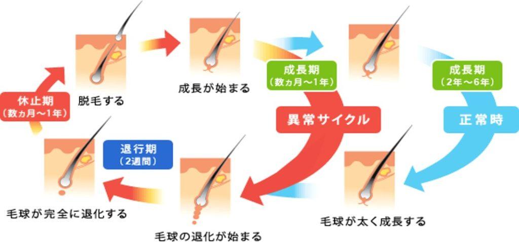 AGAヘアサイクル2