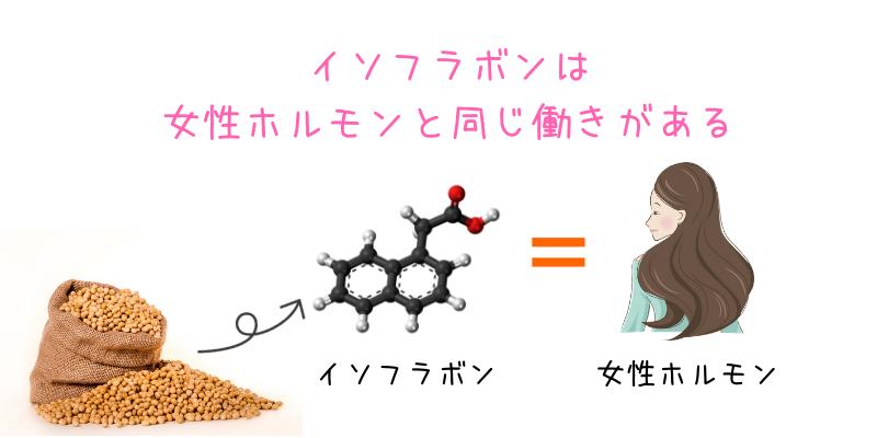 大豆イソフラボンには女性ホルモンと同じ働き