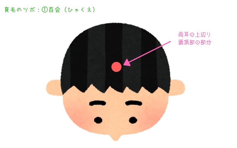 頭皮のツボ①