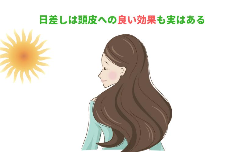日差しは頭皮への良い効果も実はある