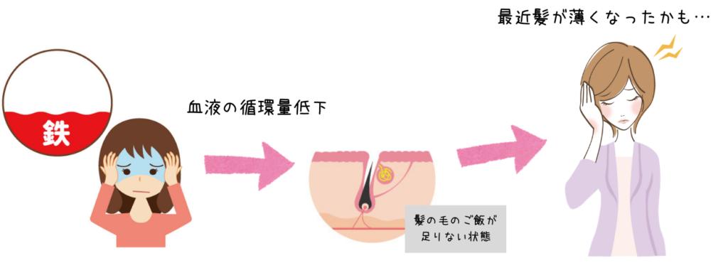 貧血による抜け毛が増える原因
